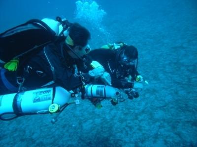 Extended Range Diver (ERD)