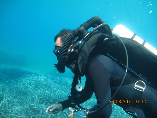 Technical Rebreather Diver (TRD)